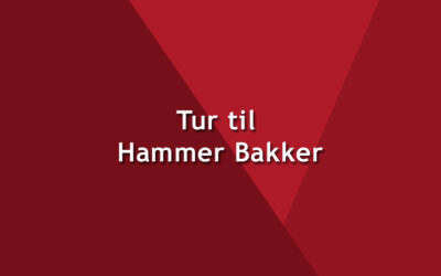 Tur til Hammer Bakker